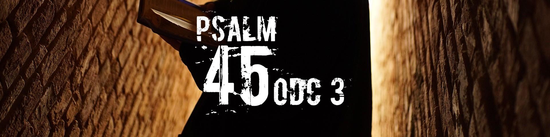 """Rekolekcje Wielkopostne 2018 - """"Psalm 45"""" ks. Artur Ważny - odc. 3"""