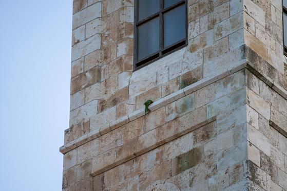 Jerusalem_0-103.jpg