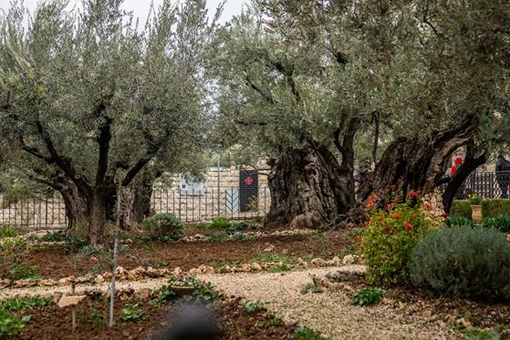 Jerusalem_0-67.jpg